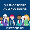 LES ELECTIONS DANS LES CCI
